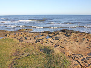 The coastline at Newbiggin in Northumberland